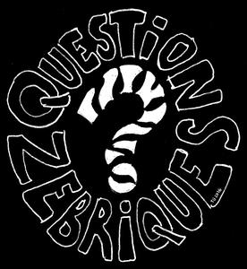 questions-zebriques-dessin original multipotentiel
