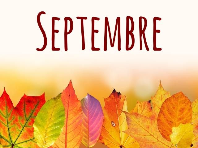 automne-x1-vivreavecunzebre