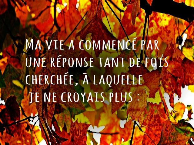 automne-x3-vivreavecunzebre