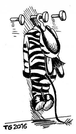 Peau de Zebre accrochée sur un porte manteau