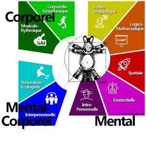 9 intelligences-Mental-Corporel