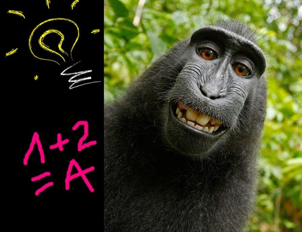 Intelligences multiples en 9 réponses